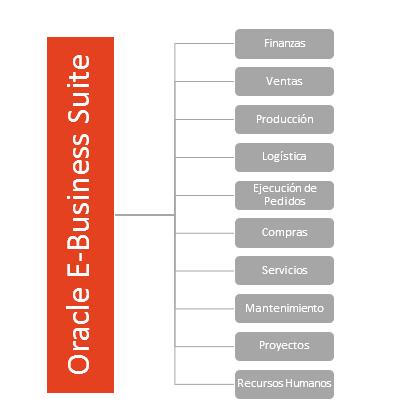 Oracle E Business Suite Insiemeit